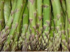 Asperge Verte Botte Origine France